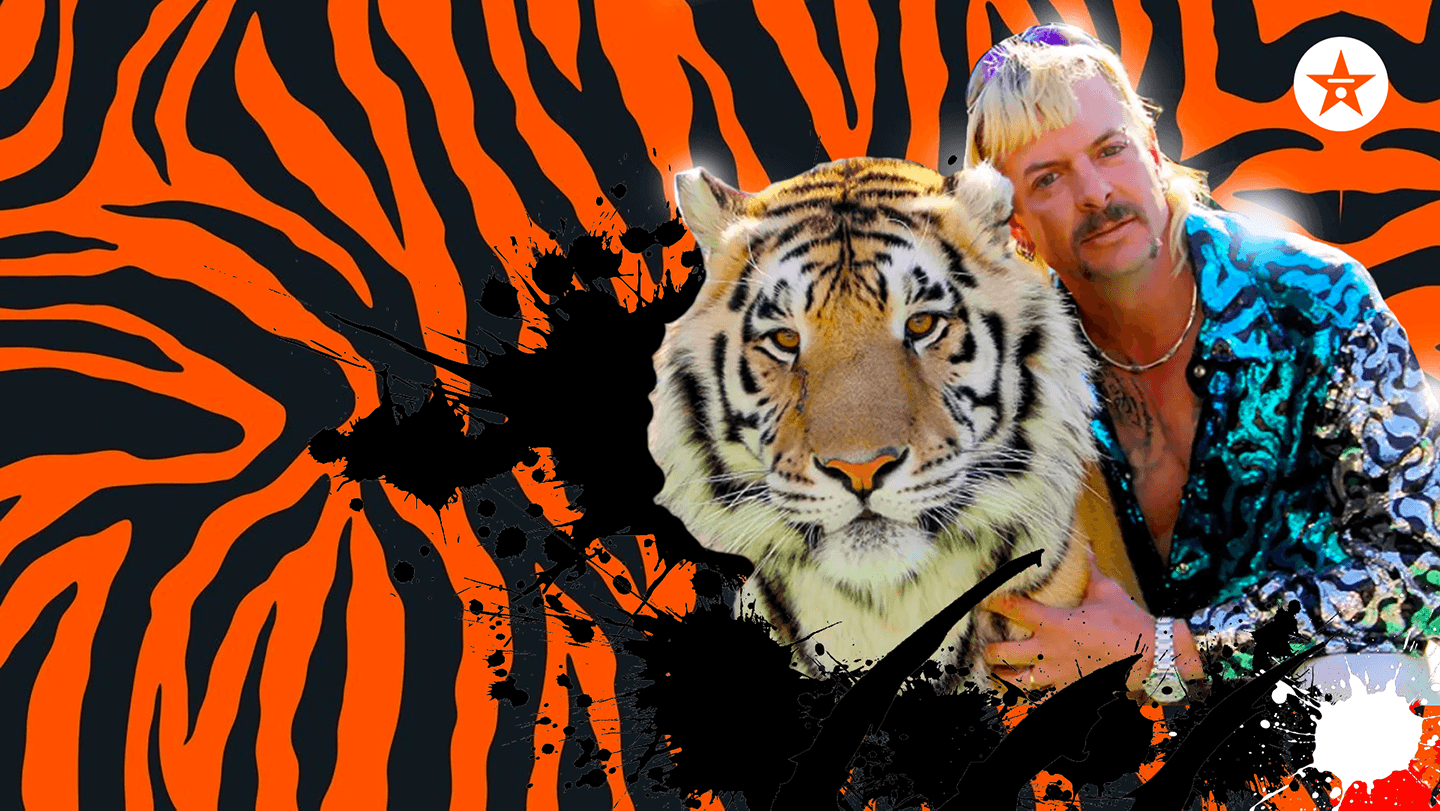 tiger king zoom background