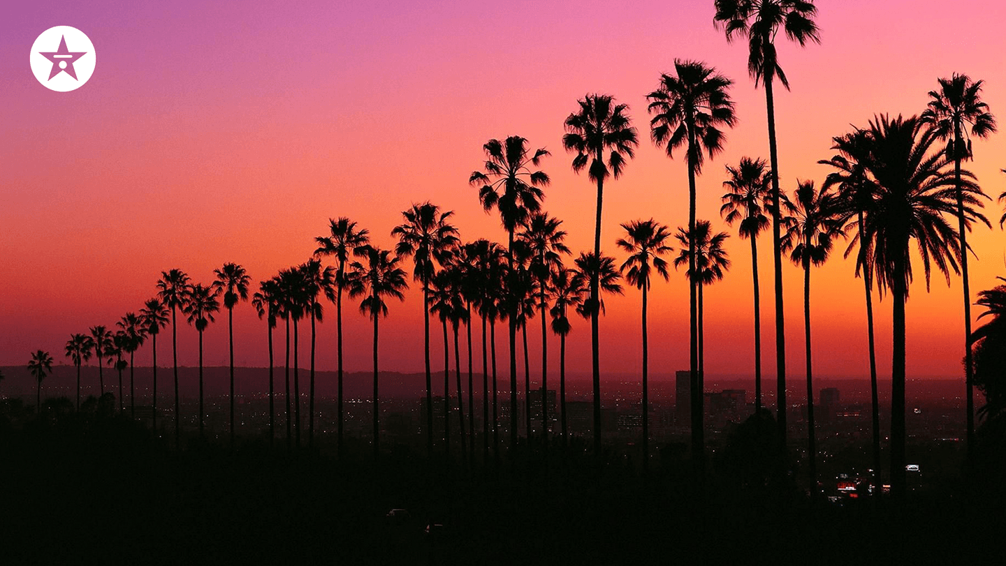 hollywood sunset zoom background